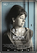 Watch Full Movie - Bird in the Room - צפו בסרטי איכות