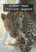 Watch Full Movie - The Last Leopard - לצפיה בטריילר