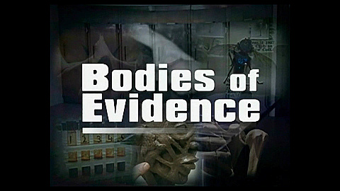 Watch Full Movie - Bodies of Evidence - The Scent of Evil - לצפיה בטריילר