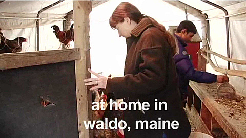 Watch Full Movie -  At Home In Waldo, Maine - לצפיה בטריילר
