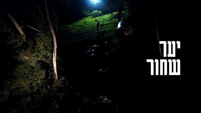 Watch Full Movie - יער שחור - לצפיה בטריילר